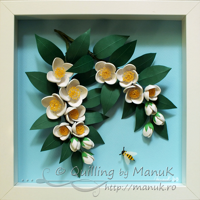Quilled Jasmine Flowers In A Shadowbox Frame Quilling By
